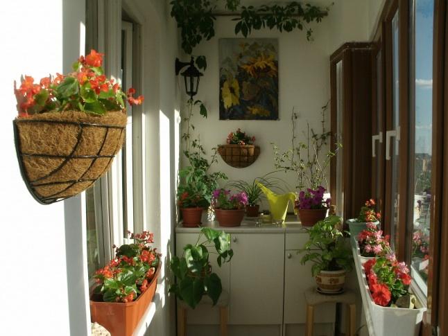 Как оформить балкон для цветов