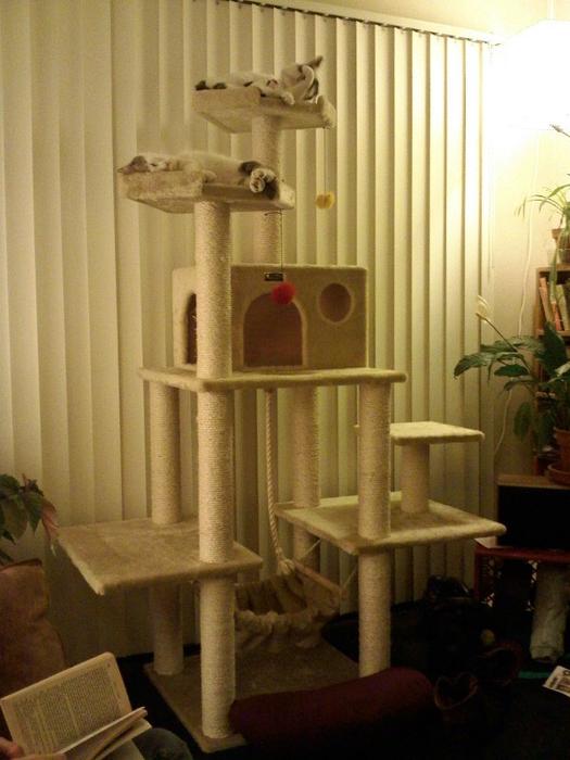 cat_house12 (525x700, 341Kb)
