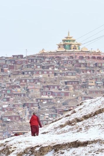 Дома тибетских буддистов на склоне Larung Gar