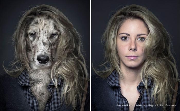 Собаки действительно похожи на своих хозяев!