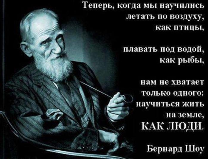Афоризмы и цитаты на предмет истории