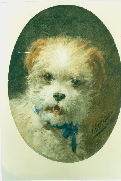A terrier (421x630, 157Kb)