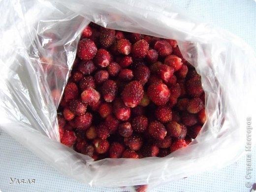 Отличный способ замораживания на зиму ягод, фруктов и овощей (1) (520x390, 110Kb)
