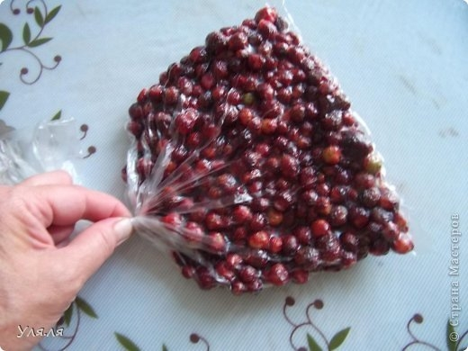 Отличный способ замораживания на зиму ягод, фруктов и овощей (6) (520x390, 111Kb)