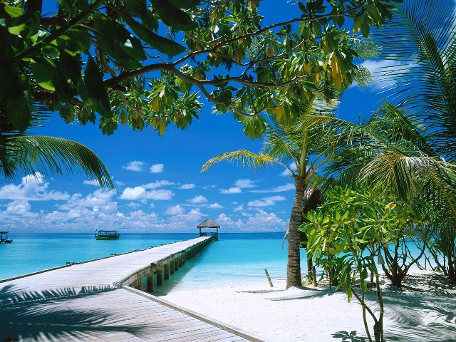 8.-Maldives (640x480, 151Kb)