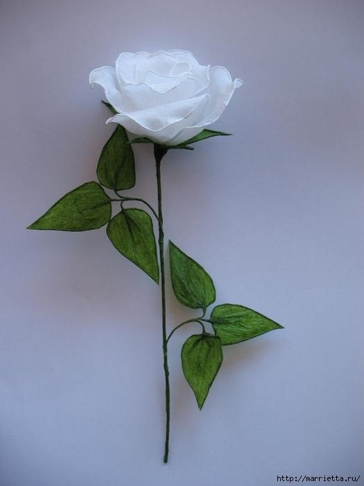 Очень красивые розы из гофрированной бумаги (29) (525x700, 175Kb)