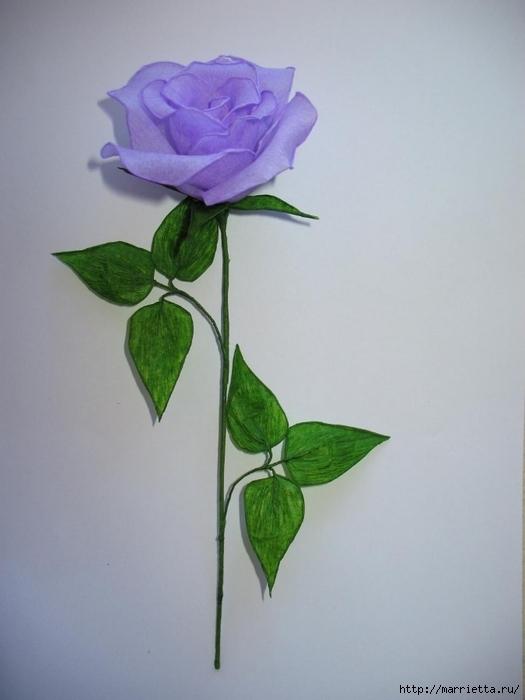 Очень красивые розы из гофрированной бумаги (37) (525x700, 167Kb)