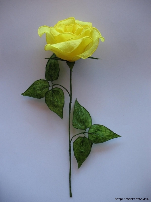 Очень красивые розы из гофрированной бумаги (39) (525x700, 188Kb)