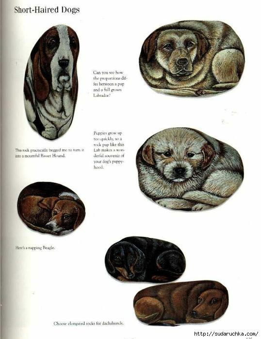 painting pets on rocks table 125 (538x700, 206Kb)