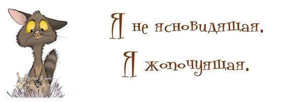 1372616325_frazochki-8 (604x202, 41Kb)