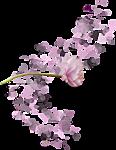 92721204_4103514_cv (116x150, 27Kb)