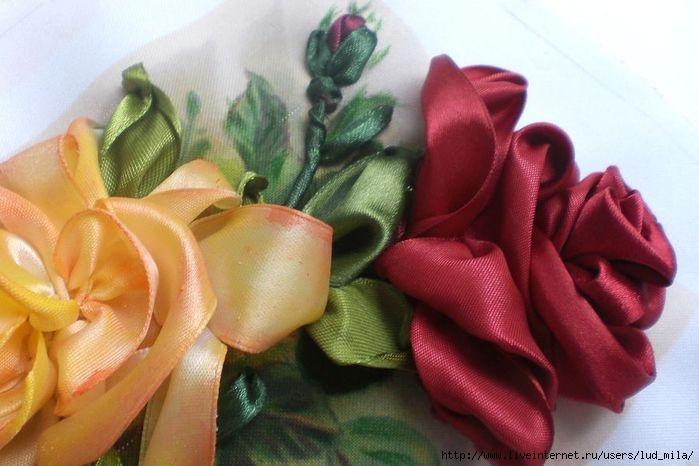 розы 009 (700x466, 155Kb)