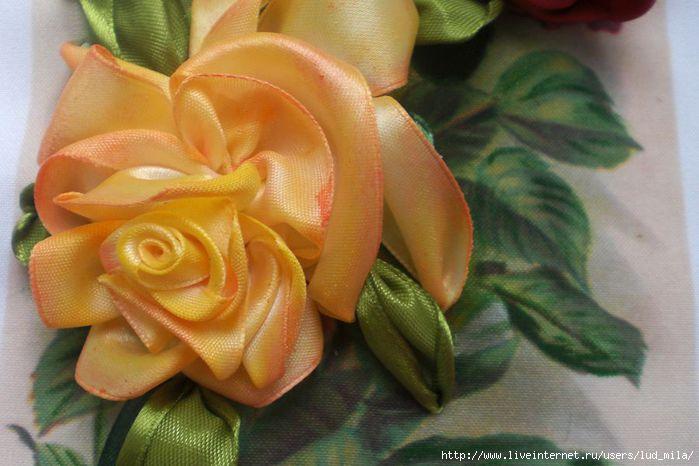 розы 008 (700x466, 141Kb)