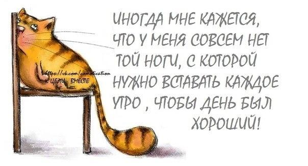 http://img1.liveinternet.ru/images/attach/c/8/102/558/102558873_large_8.jpg