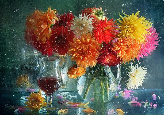 Цветы за дожд окном (700x488, 580Kb)