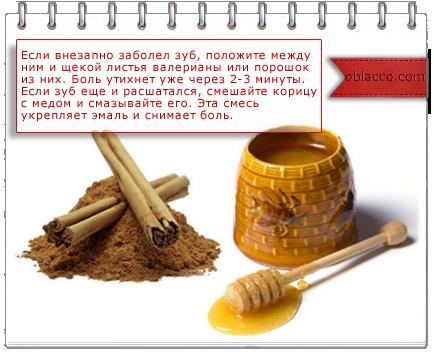 лекарство от зубной боли/3518263_korica (434x352, 141Kb)/3518263__4_ (434x352, 150Kb)