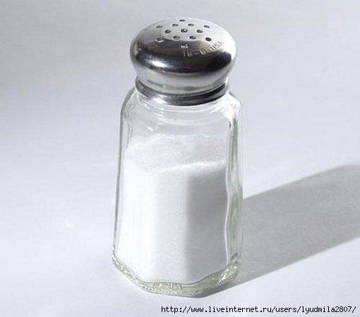 соль2 (510x450, 66Kb)