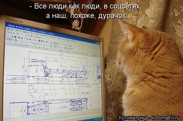 kotomatritsa_Pb (600x398, 131Kb)