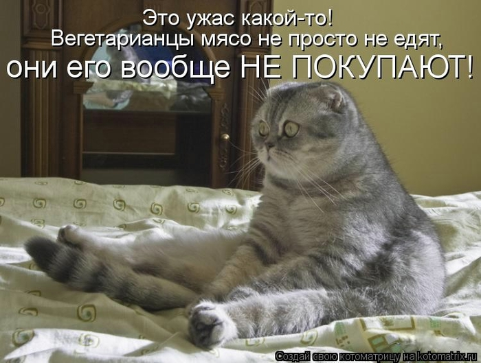 kotomatritsa_sj (700x529, 236Kb)