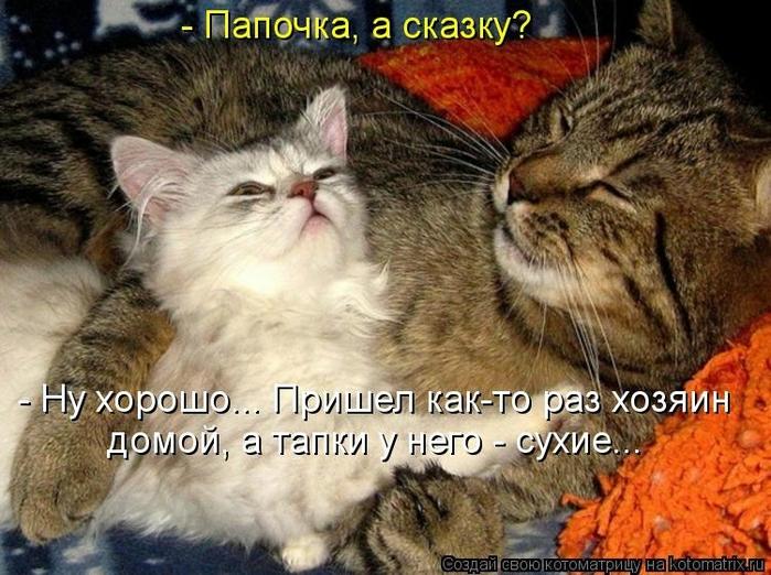 kotomatritsa_uJ (700x522, 304Kb)