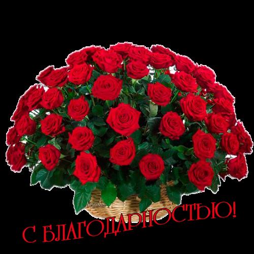 4948243_0_847ab_dc9d79fb_L_png (500x500, 309Kb)