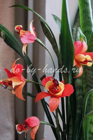 orhideya-iz-konfet19 (299x450, 43Kb)