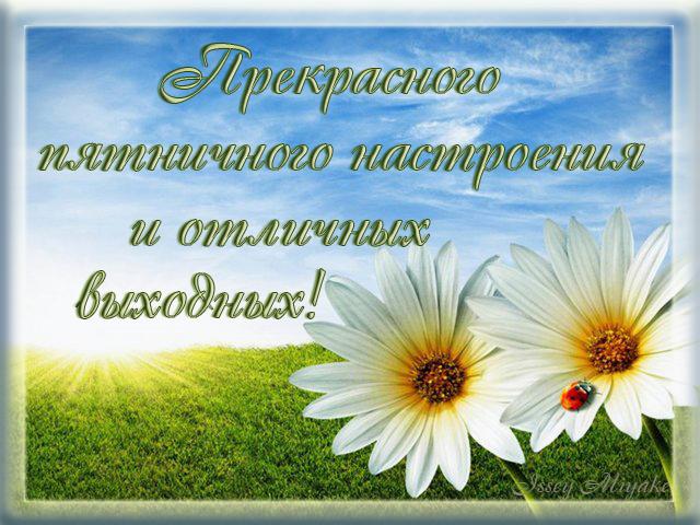 http://img1.liveinternet.ru/images/attach/c/8/102/658/102658389_Prekrasnuyhvuyhodnuyh.jpg