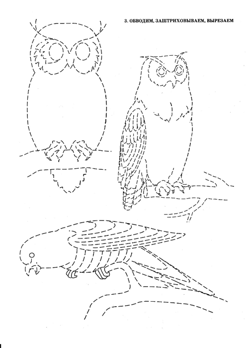 ptici-4 - копия (495x700, 96Kb)