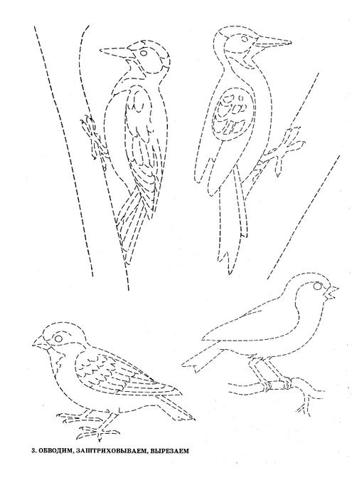 ptici-6 (495x700, 95Kb)