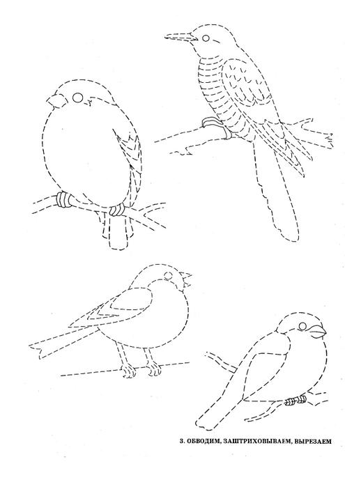 ptici-8 (495x700, 76Kb)