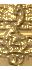 1 д1 (32x70, 6Kb)