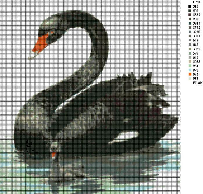 Вышивки крестом черный лебедь