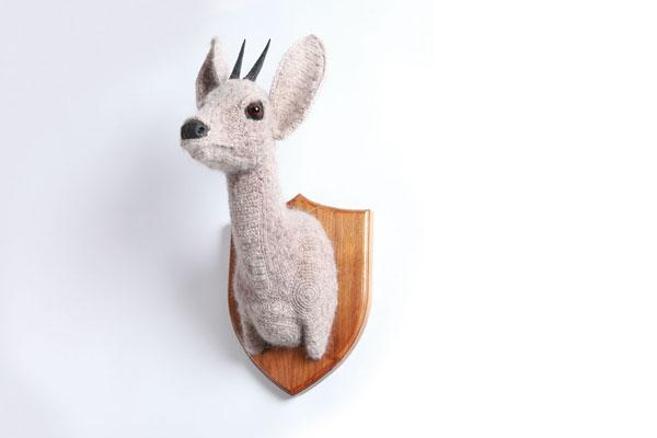 Duiker-Trophy-Head (600x400, 17Kb)