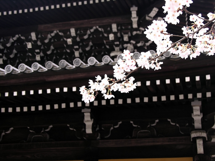 The Nanzen-ji (700x525, 228Kb)