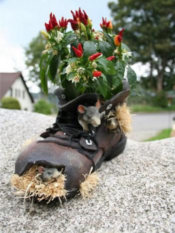 4979645_shoescontainergarden56_1 (350x466, 35Kb)