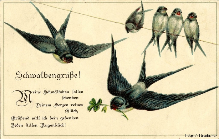 Vintage-Bird-Image-Swallows-Line-GraphicsFairy5-1024x654 (700x447, 257Kb)