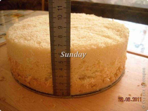 Рецепт бисквита для торта пошагово с