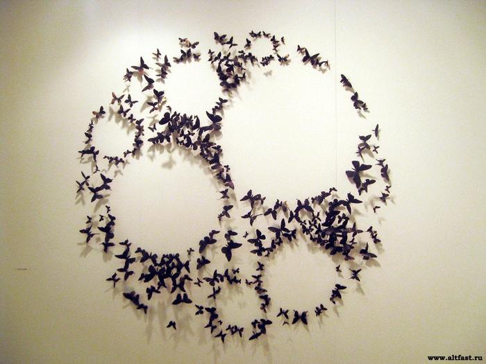 1364102773_butterflies05 (700x525, 405Kb)