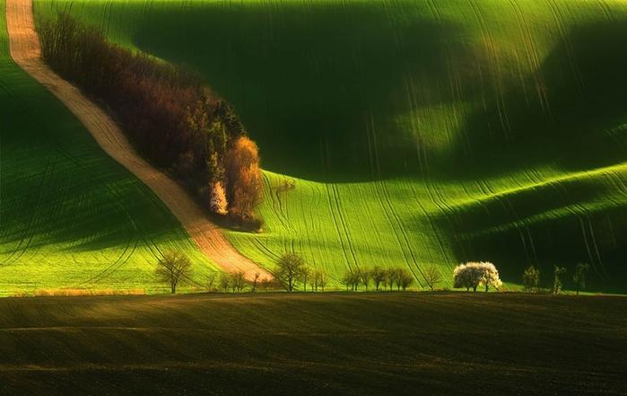 природа-Италии-Тоскана (700x441, 201Kb)