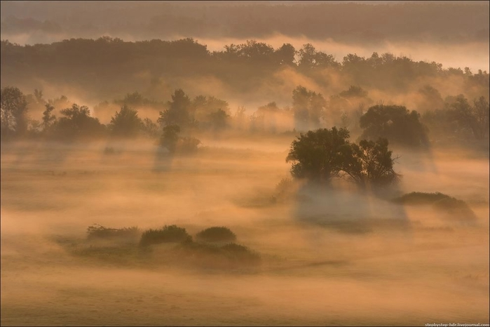 fog01 (700x466, 158Kb)