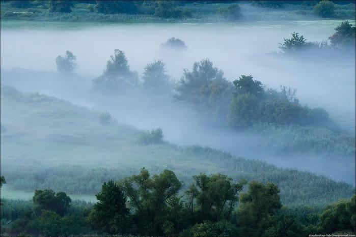 fog06 (700x466, 190Kb)
