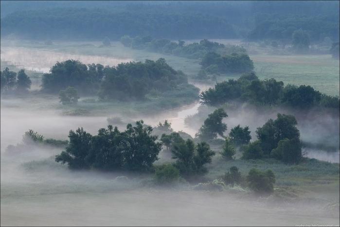 fog11 (700x466, 184Kb)