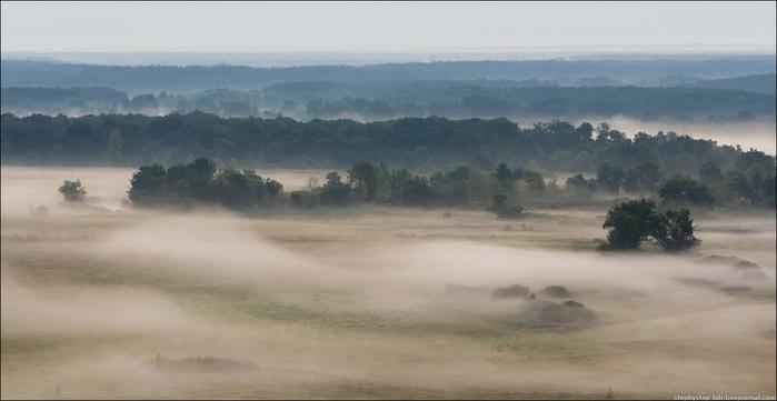 fog14 (700x361, 127Kb)