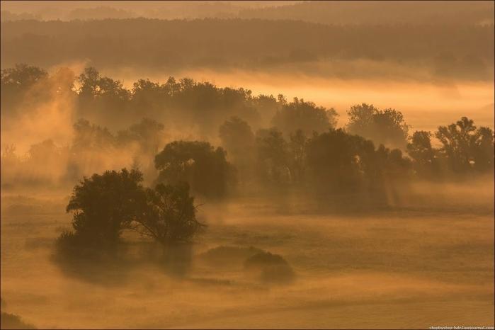 fog15 (700x466, 159Kb)