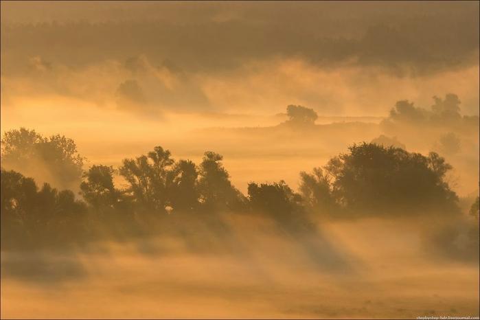 fog18 (700x466, 144Kb)