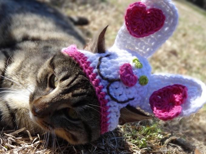 одежда для кошек фото 3 (680x510, 187Kb)