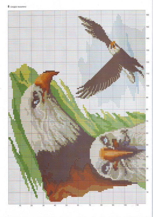 Райская птица вышивка 28
