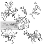 Превью 400-04411448em-Vector-set-of-bell-flowers-design-elements--from-my-big--Floral-collec (448x450, 111Kb)