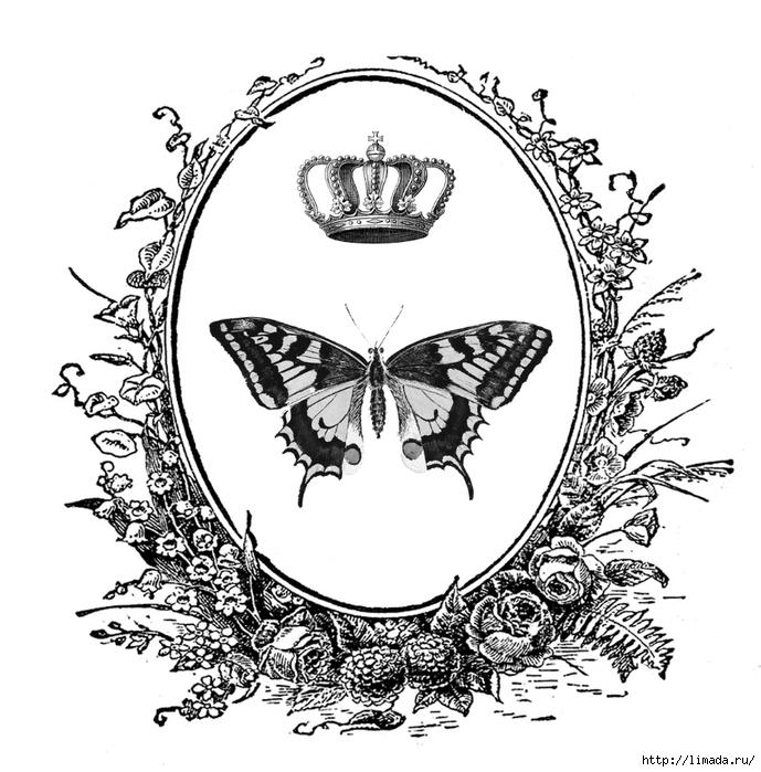 241-ButterflyCrest (689x700, 264Kb)