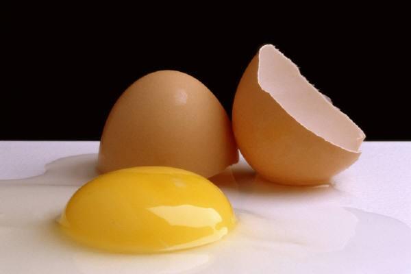 Яйца их полезность